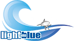 Slow Dive Logo