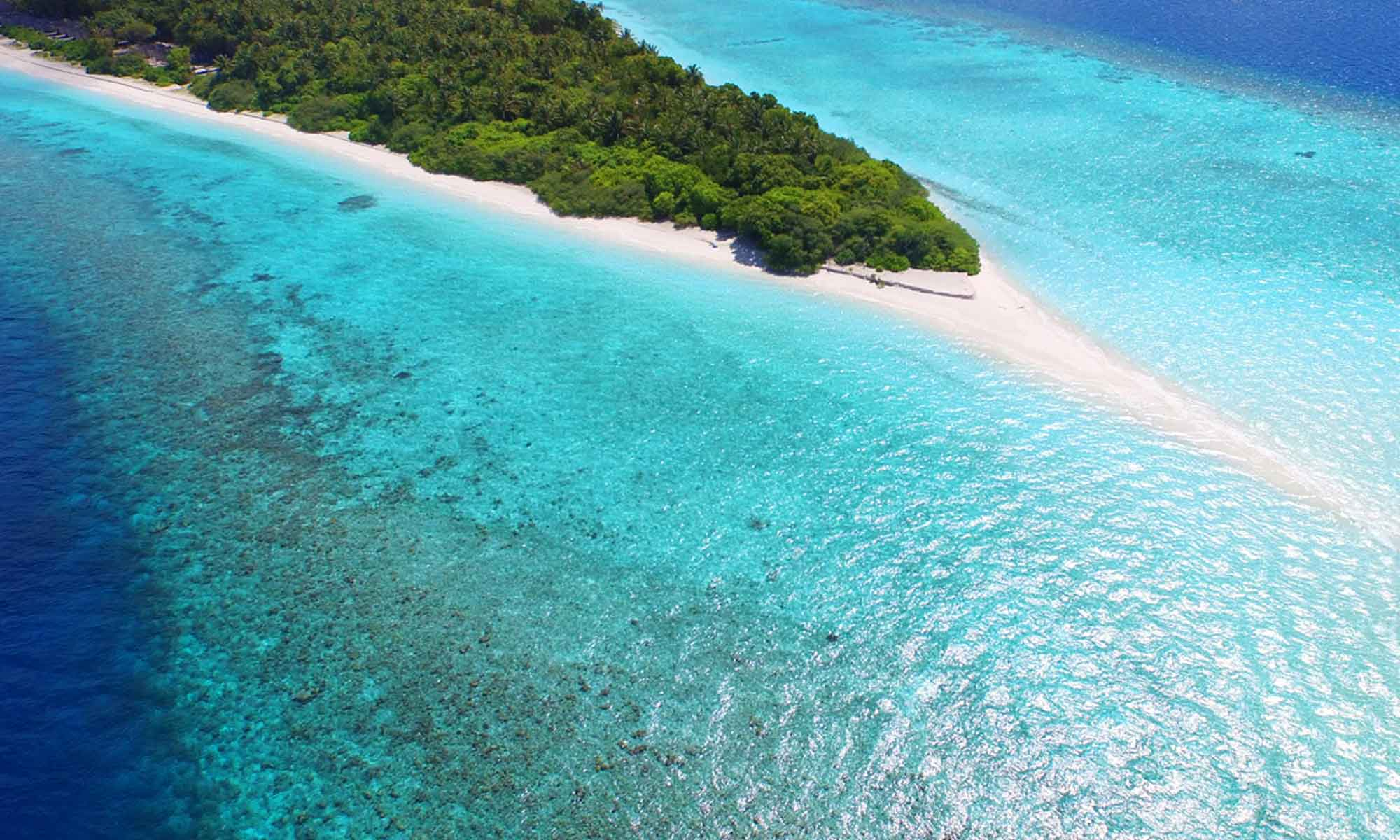 Slow Dive Indischer Ozean Malediven Dhigali Maldives