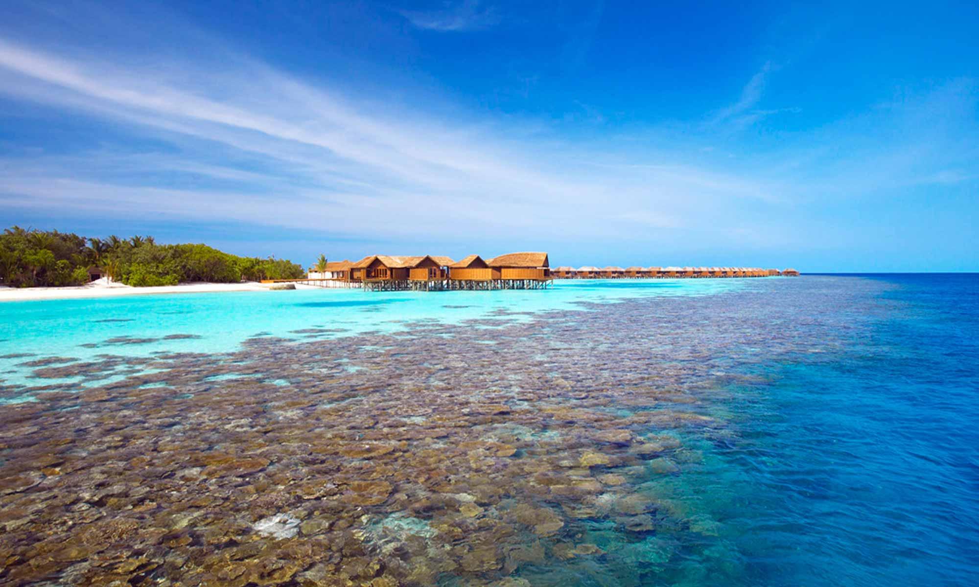 Slow Dive Indischer Ozean Malediven Pro Divers Lily Beach Hausriff