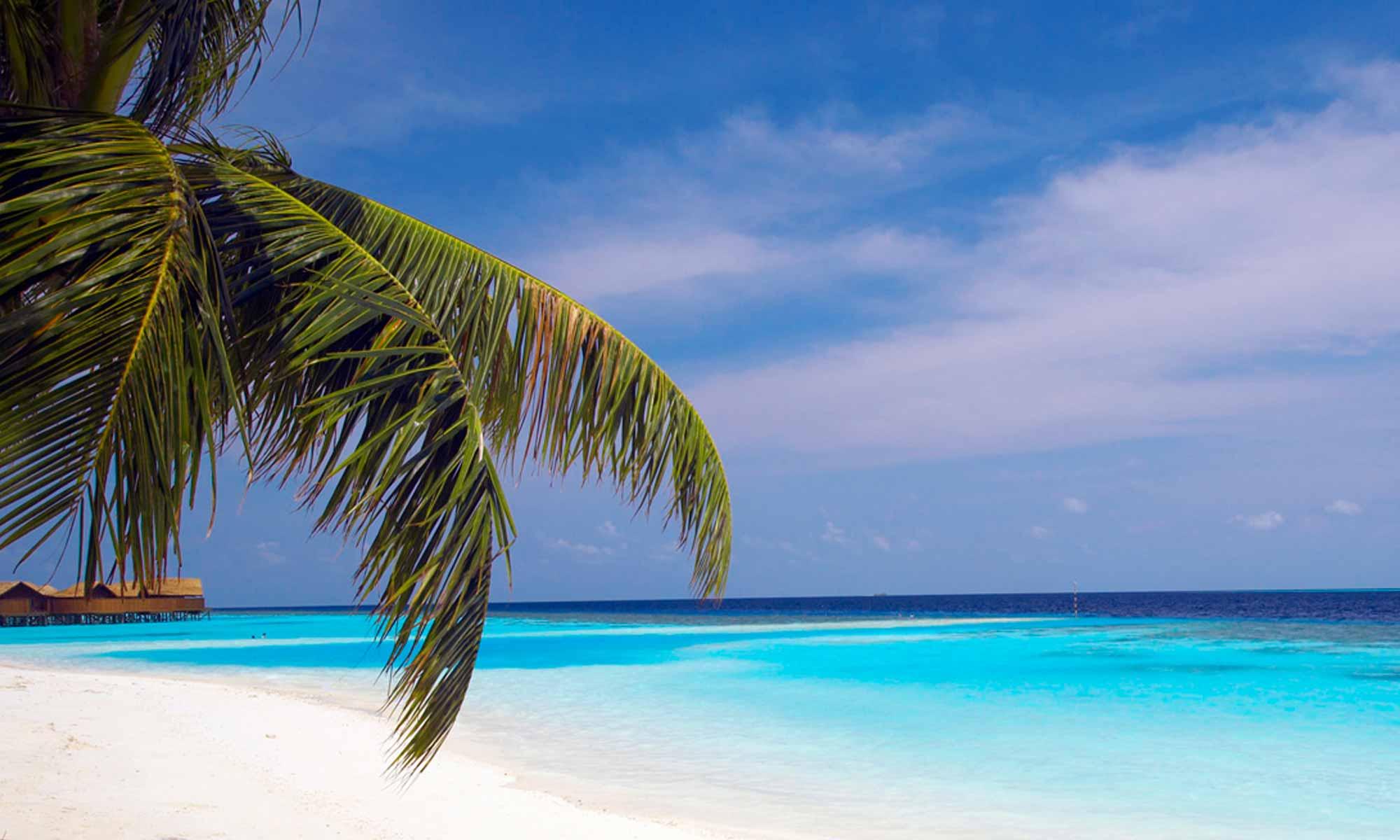 Slow Dive Indischer Ozean Malediven Pro Divers Lily Beach