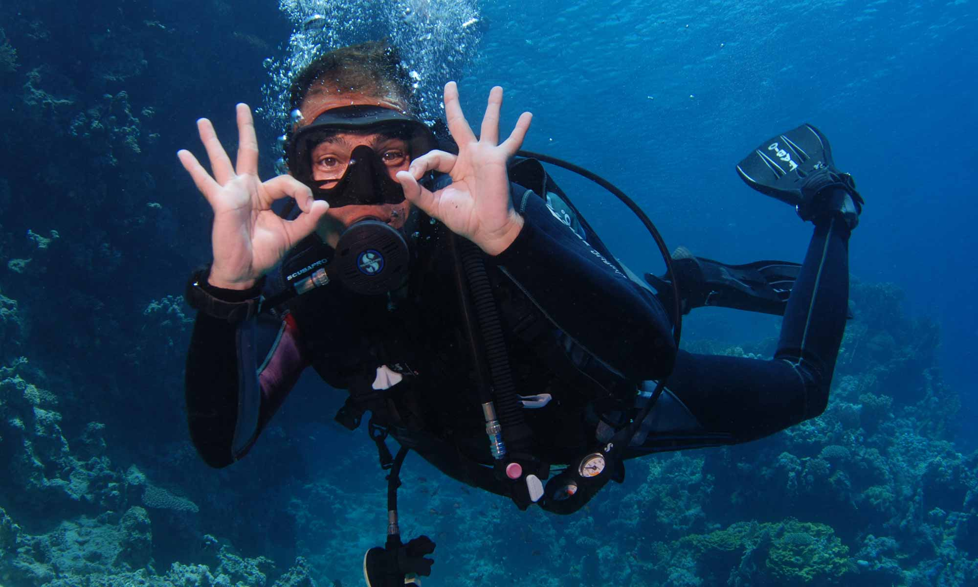 Slow Dive Rotes Meer Ägypten Camel Dive Club Taucher