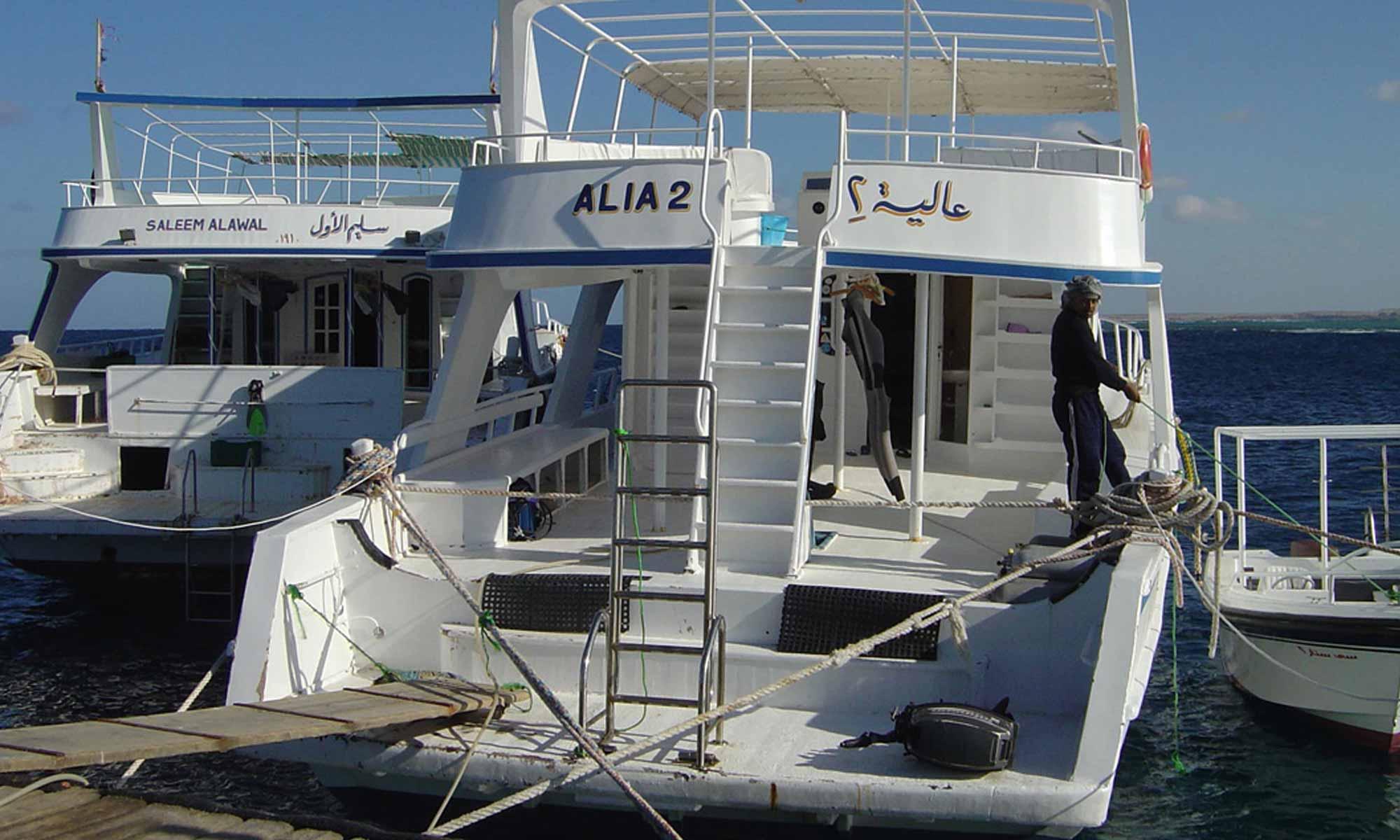 Slow Dive Rotes Meer Ägypten Ducks Dive Mangrove Bay Boot