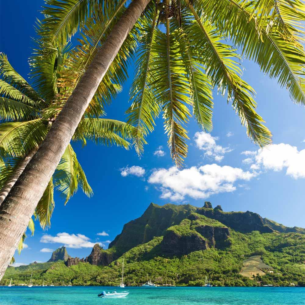 Slow Dive Südsee Französisch Polynesien