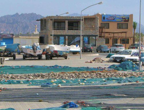 Al Marsa Dive Center Dibba