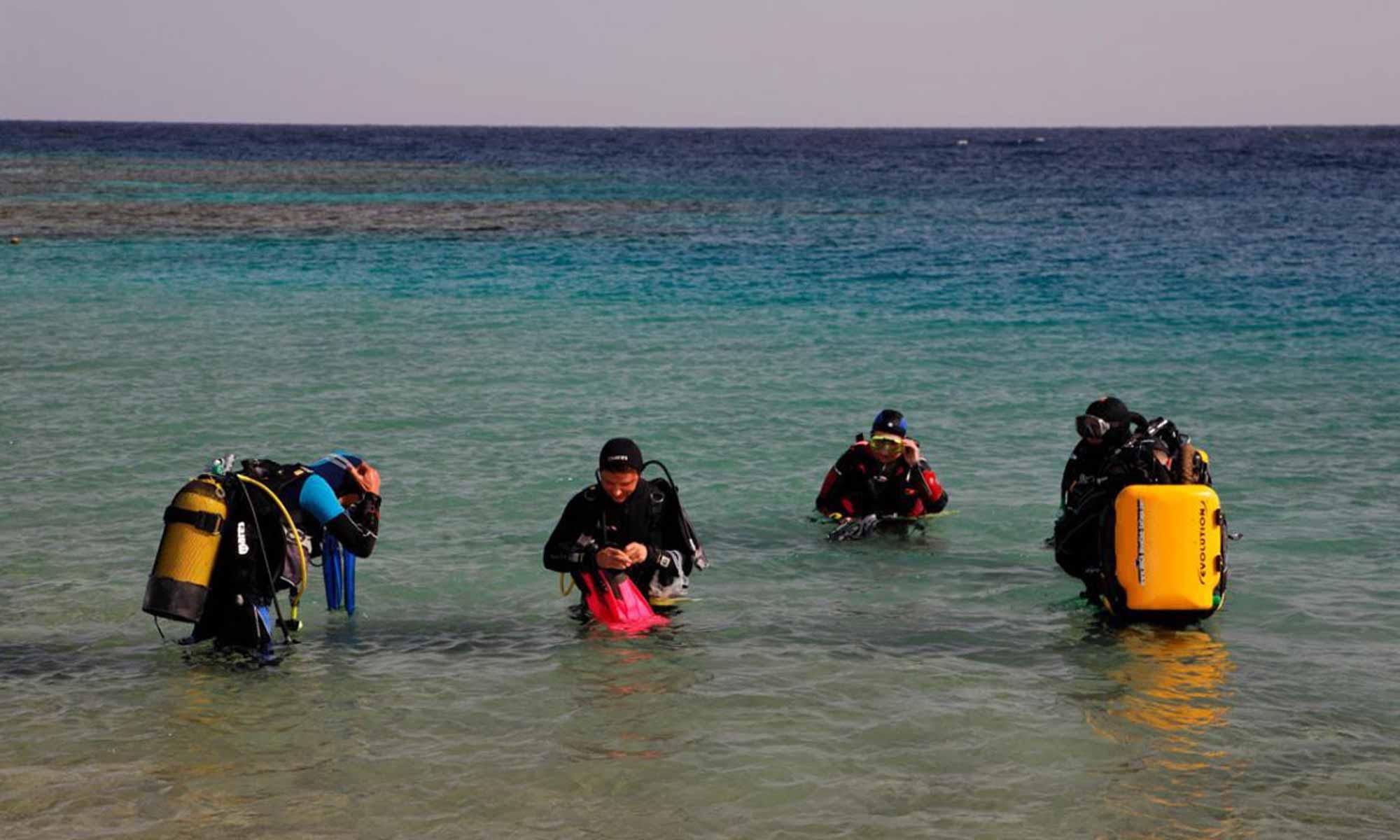 Slow Dive Rotes Meer Ägypten Orca Dive Club Coral Garden Strandtauchgang