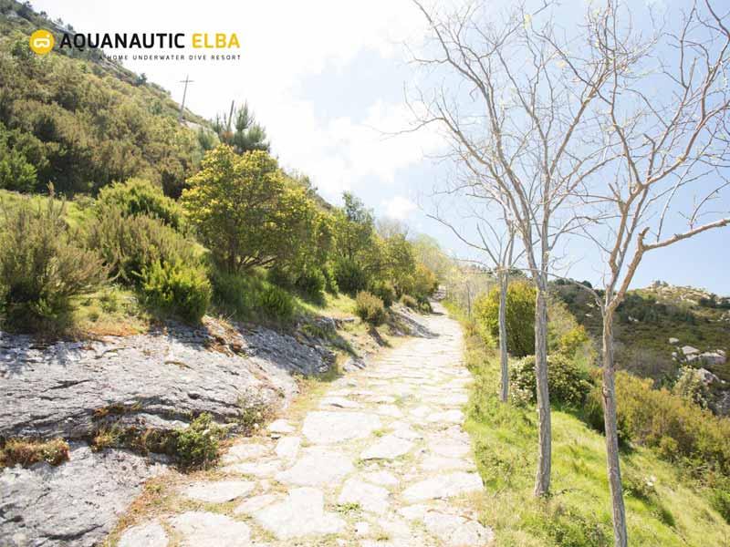 Slow Dive Angebote Italien Elba Berge Weg