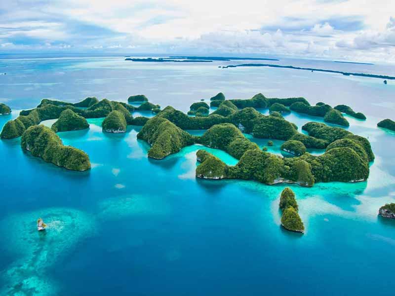 Slow Dive Special Palau 2022 Angebot